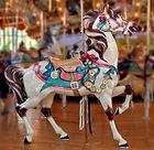 Carousel horse.jfif