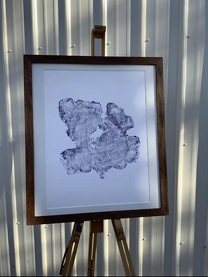Cedar Tree Ring Print