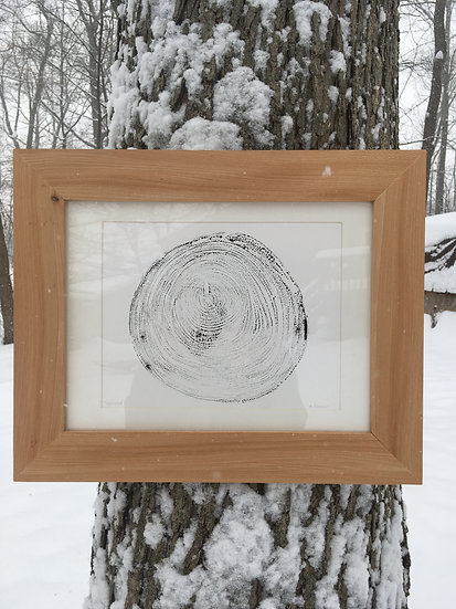 Sycamore print and frame