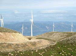 Wind In Leros