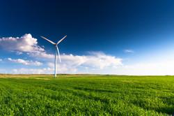 Wind Turbine in green field