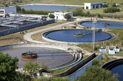 Municipal wastewater