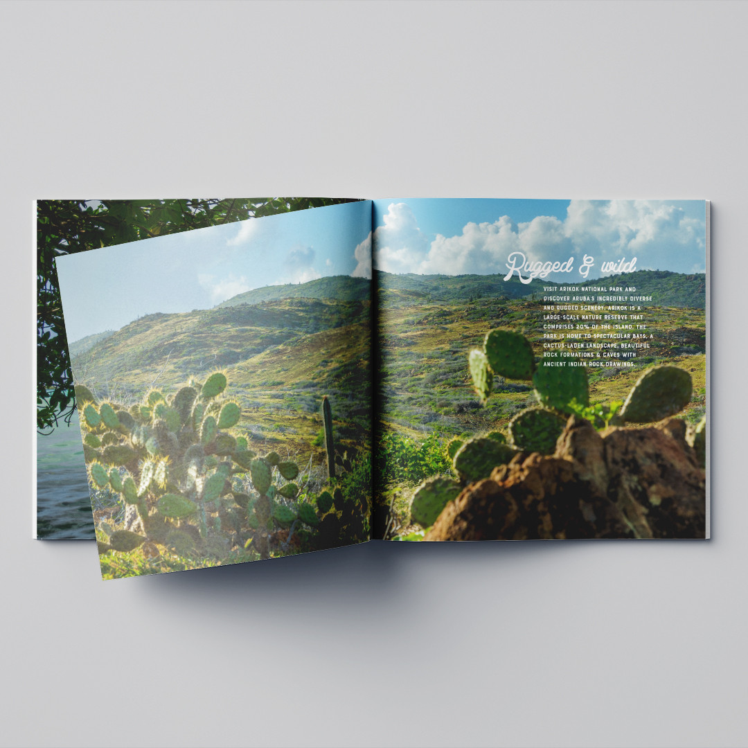 Inhoud inspiratiebrochure