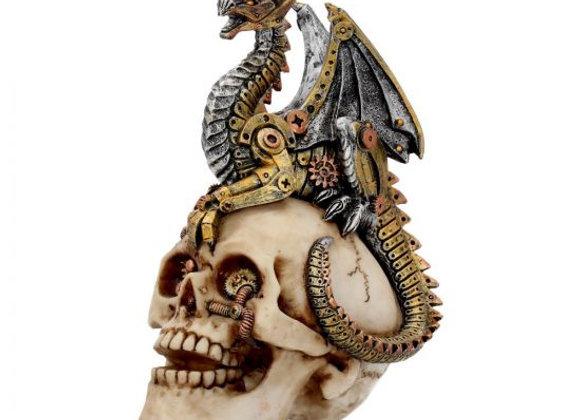 Dragon's Grasp 18.5cm