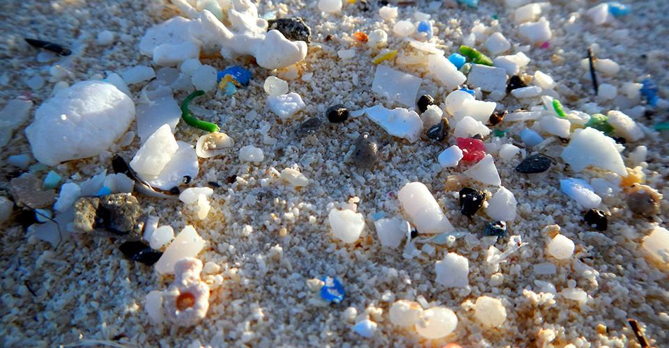 Microplastics seen during the 2014 Northwestern Hawaiian Islands marine debris removal mission (NOAA).