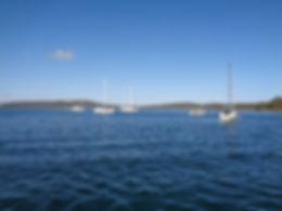 Johnson Cove-DSC01333.JPG