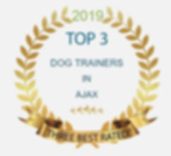 Top 3 Trainers Badge a.jpg