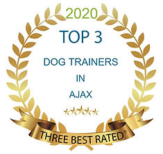2020 Top 3 Dog Trainers.jpg
