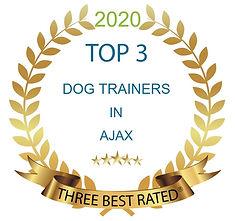 2020 Top 3 Dog Trainers.jpg