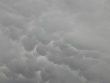 Mamatus dans le ciel Montalbanais