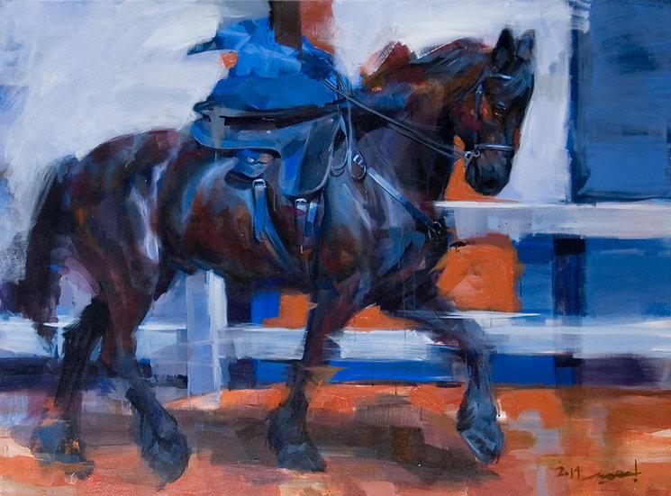 Savari (Rider)
