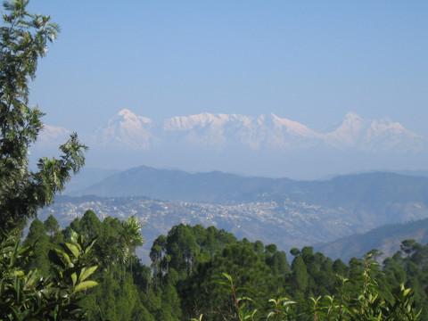 Home Away From Home at Sonapani, Uttaranchal India