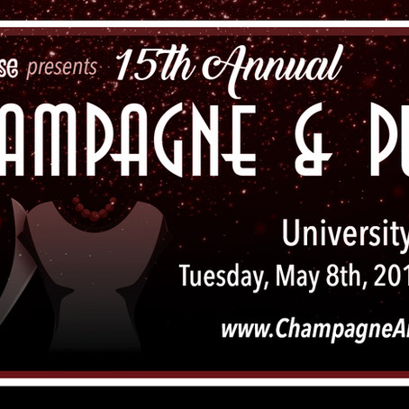 15th Annual Champagne And Purses Party to benefit It's All About the Kids®