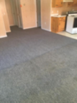 before and after carpet cleaning.jpg