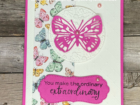 Butterflies and New Catalog