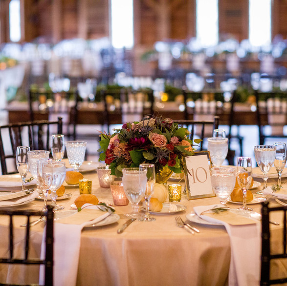 Tracey Buyce Photography, Pellegrini Events
