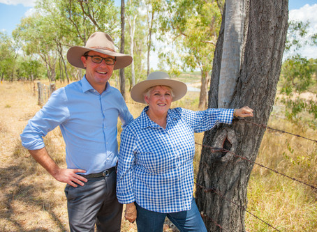 Immediate drought assistance is available in Capricornia