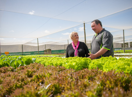 Smart Farms Grants to Support Big Ideas