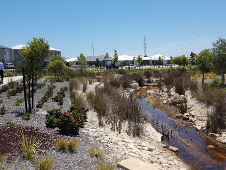 High urban groundwater in Perth