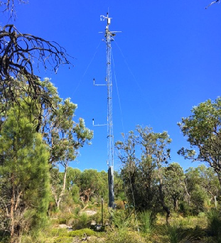 Evapotranspiration and recharge over the Perth Basin