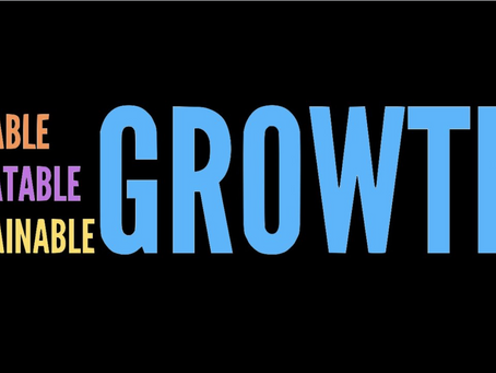 The Digital Growth Concept