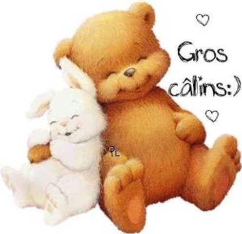 calins_014