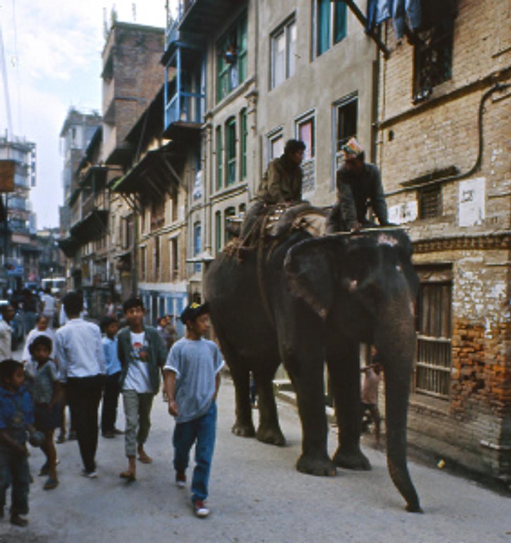 Inde-Népal-1987-245