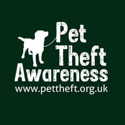 pet theft awareness.jpg