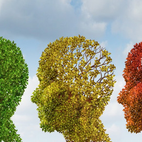 Tea with the ND: A Natural Approach to the Aging Brain