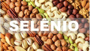 Alimentos naturais que contém Selênio - Antioxidante natural