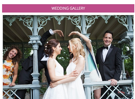 Gay wedding .png