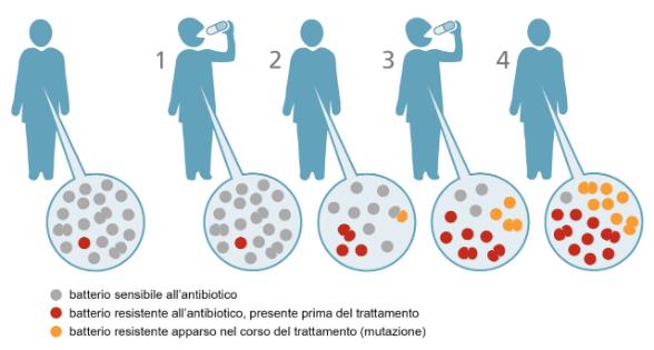 Antibiotico Resistenza: cos'è, perché è cosi pericolosa e come contrastarla.