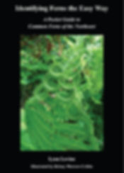 Fern Book Cover Identifying ferns the ea