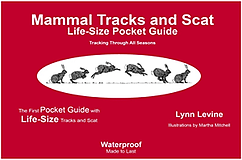 Cover of Mammal Tracks and Scat Pocket Guide