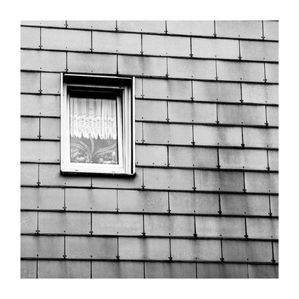 Fenêtre écailles.jpg