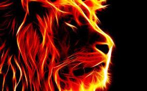 inflammableking1.jpg
