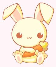 cute bunny 2.0.jpg