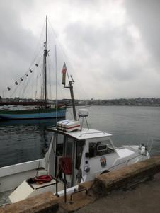 Pêche en mer Erquy - Pêche Evasion - 0029