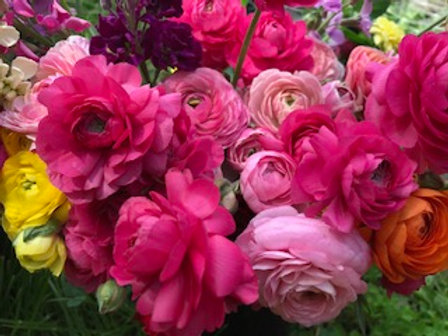 2021 Flower CSA - Partial Season