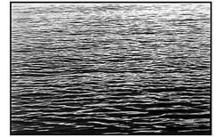 2 Acque Esterne Porticciolo Nervi.jpg