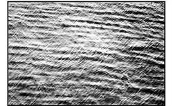 8 Spiaggia Vesima Bagni Marisa.jpg