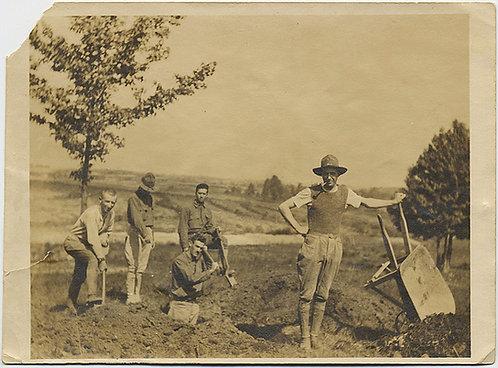 MEN DIGGING in FIELD w SHOVELS & WHEELBARROW