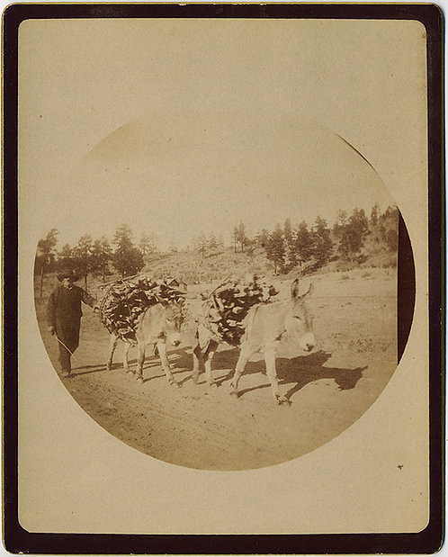 EARLY KODAK #2 MEXICAN? PEON with DONKEYS CARRYING WOOD