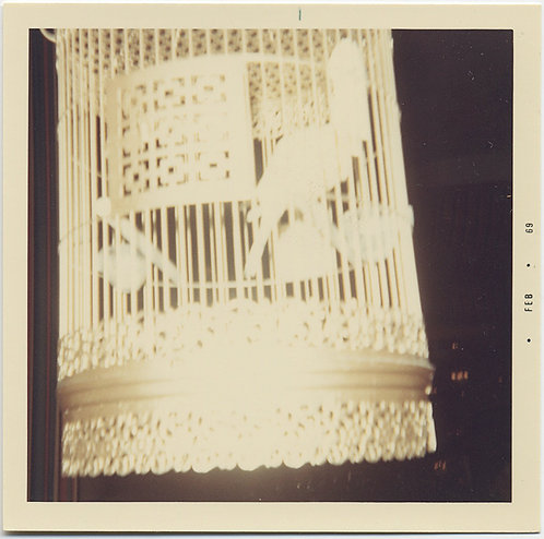 ALMOST LACE FLASH BLANCED CLOSEUP of BIRD CAGE RENDERED ABSTRACT
