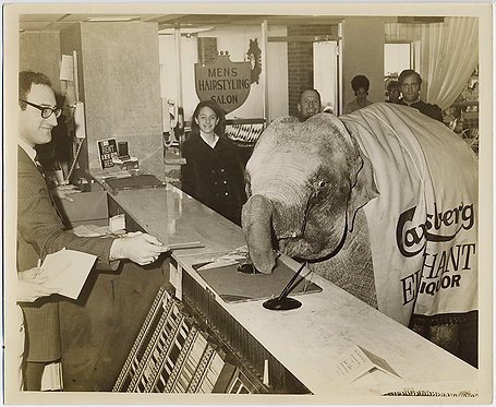 CARLSBERG ELEPHANT SIGNS in as GUEST at HOTEL PROMOTIONAL PRESS PRINT UNUSUAL