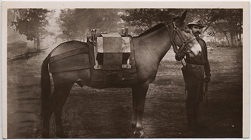 AMAZING TRIMMED GORGEOUS RPPC SOLDIER & PACK HORSE w INTERESTING CARGO STRAPPED