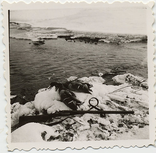 DEAD DUCKS and RIFLE what SHOT 'EM LIE on ICY SNOW COVERED ICE FLOE