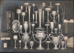 fp2509(Tophies&Vases)