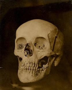 fp0033(skull)