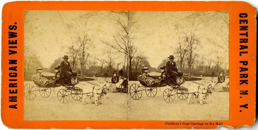 fp2182(SV-Goat-Cart-Central-Park)